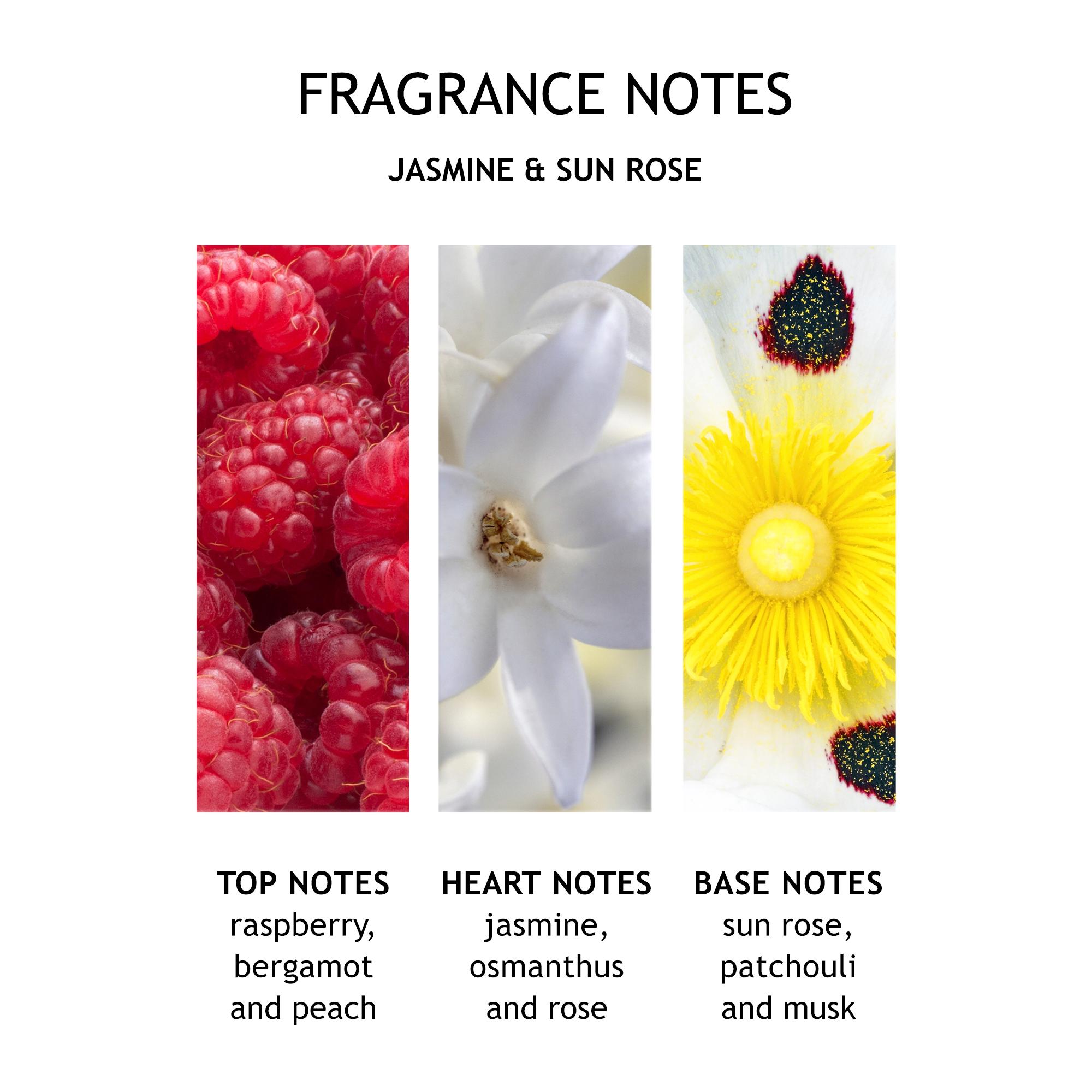 Jasmine & Sun Rose Exquisite Body Oil