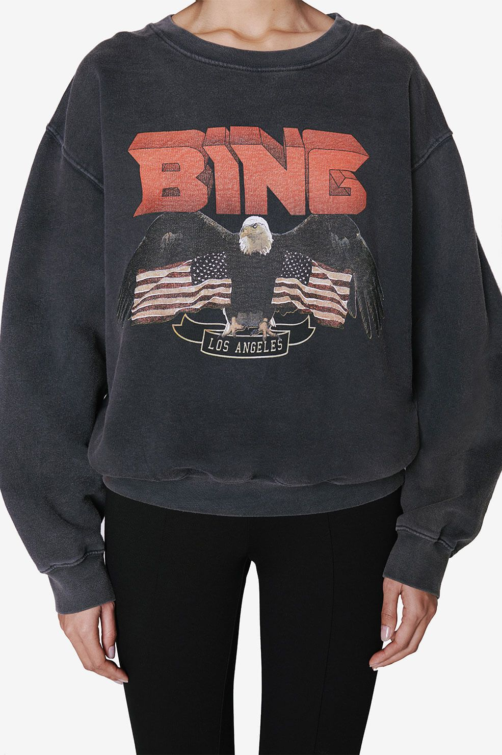 Vintage Bing Sweatshirt