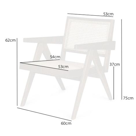 Easy Lounge Chair
