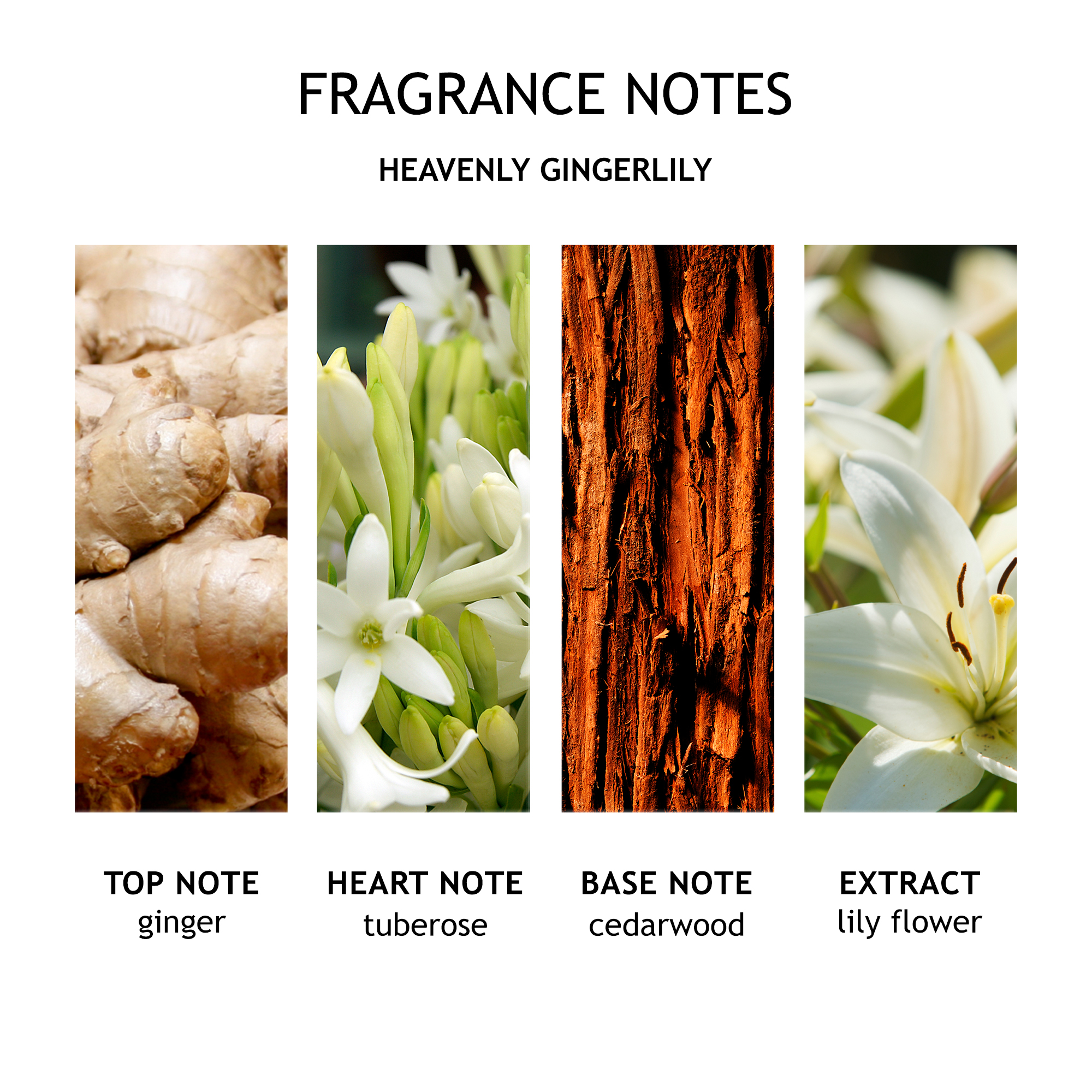 Heavenly Gingerlily Caressing Body Oil